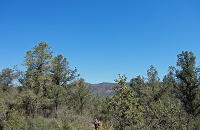 Apache Creek Wilderness Hike