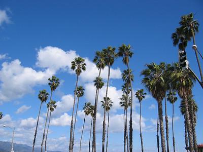 2006_03 Santa Barbara