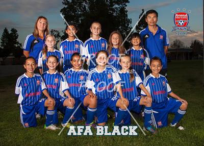 20121009-AFA-GU10-Black