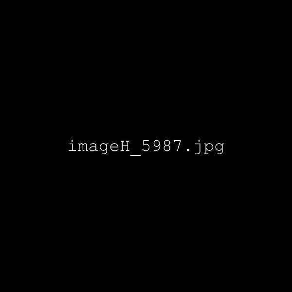 imageH_5987.jpg