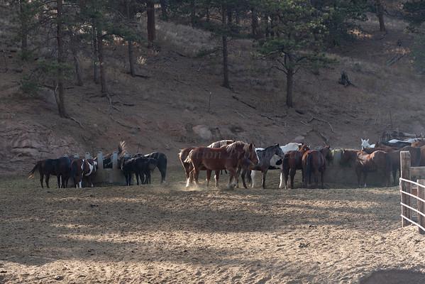 Lost Valley Ranch, Colorado