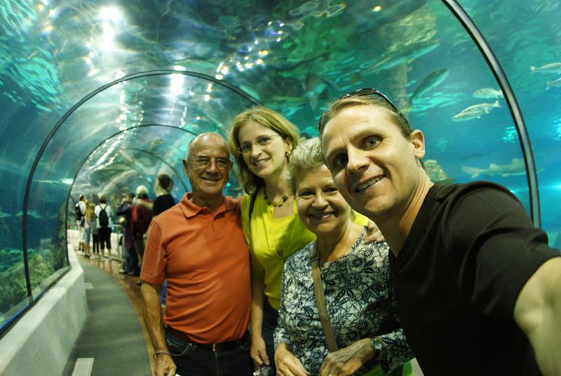 Barcelona, Spain.  Aquarium tour.