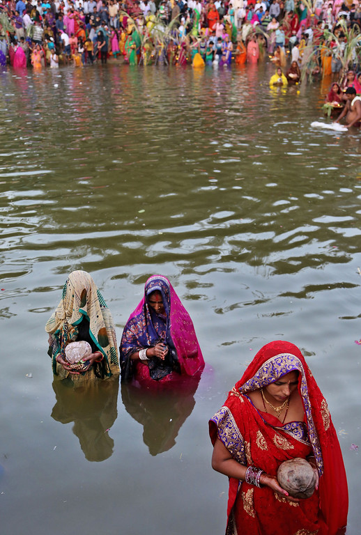 . Hindu devotees hold coconuts and stand in water to perform rituals to the setting sun during Chhath Puja festival in Bangalore, India, Friday, Nov. 8, 2013.  (AP Photo/Aijaz Rahi)