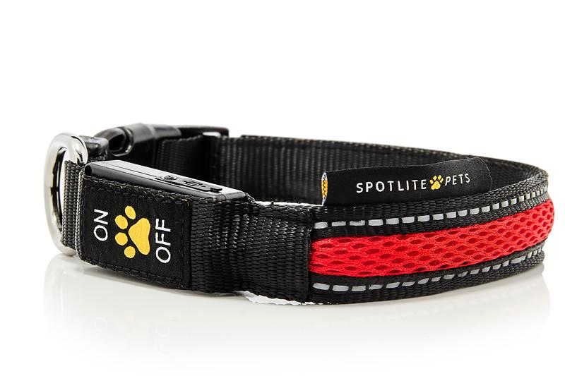 Red_Collars_Leashes_Spotlite_Pets.jpg
