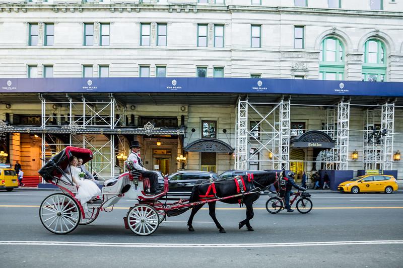 Central Park Wedding - Jessica & Reiniel-367.jpg