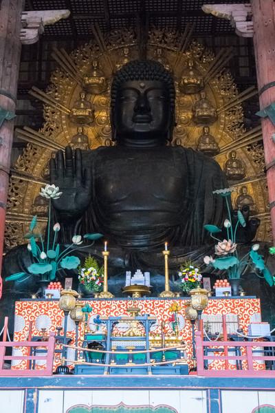 Nara Day 5 (240 of 374).jpg