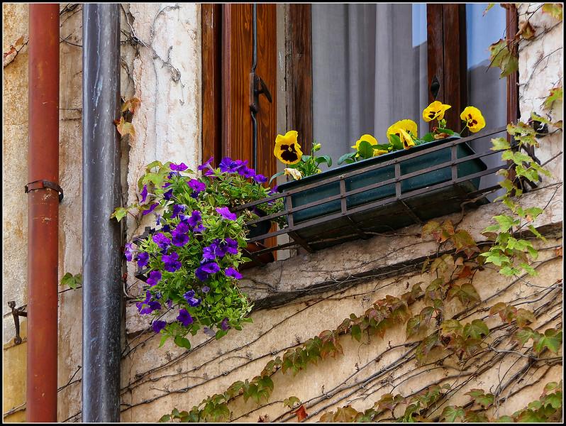 2019-10-Marostica-080-.jpg