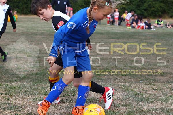 Crofton Juniors Pitch 4