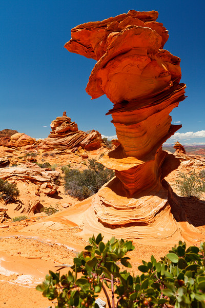 Vermillion Cliffs NM - Vermillion Cliffs - KCOT.jpg