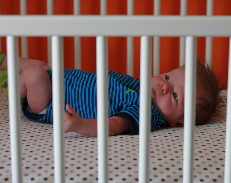 Hanging out in his crib.