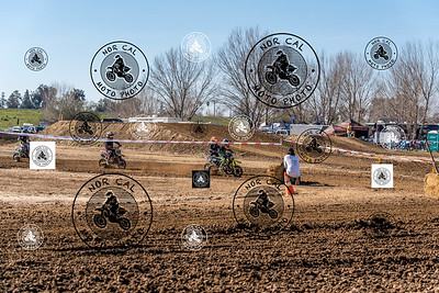 Race 12 50cc (7-8) (4-6)