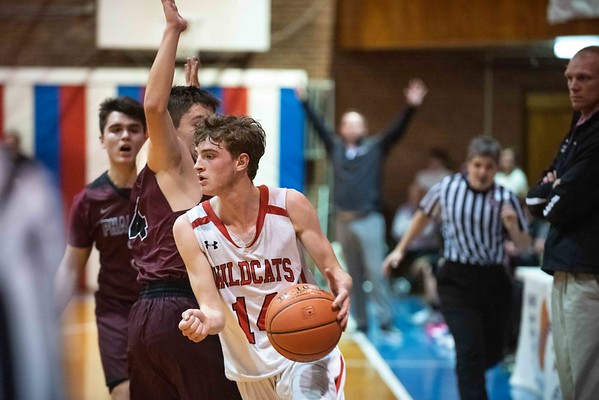 D4 basketball championships-Twin Valley vs Proctor 03072020