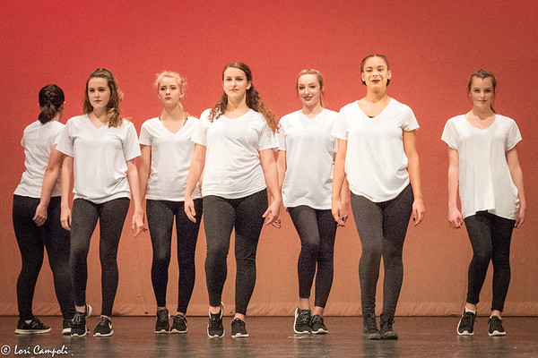 LRHS Dance Concert 010517