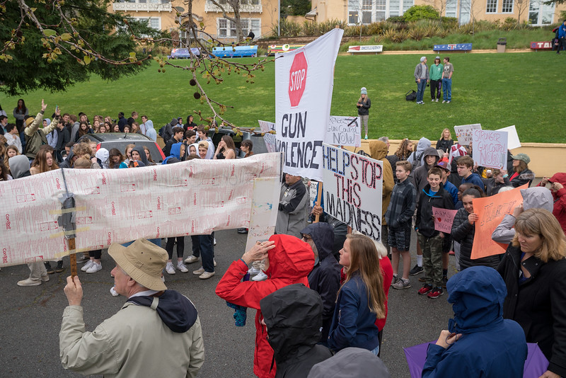 Tam and Redwood Walkout (72 of 91).jpg