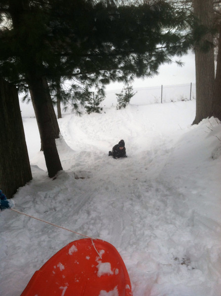 Sledding behind our house. Andrew couldn't walk up the hill so he crawled.