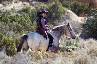 Eastern Mojave Scenic XP 2015