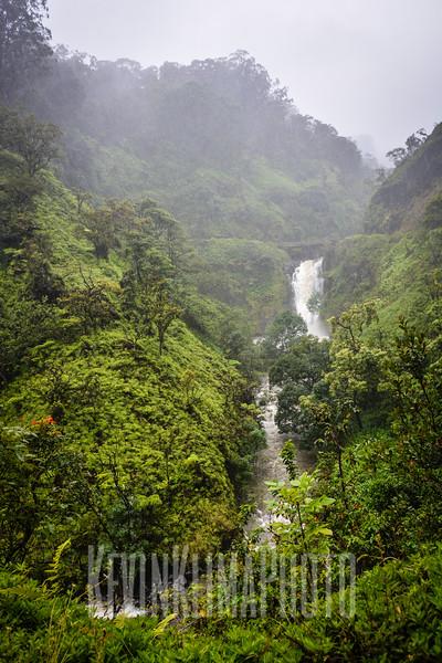 Maui116.jpg