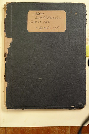 Stebbins Historical Diaries