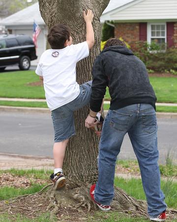 Tree Climbing Lessons - 9.2009