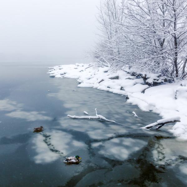 Winter in Philly-.jpg