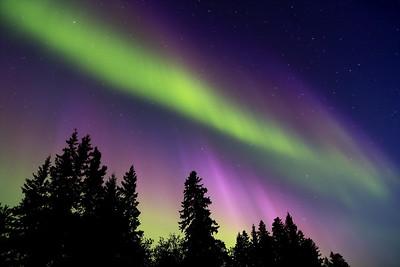 All Aurora's