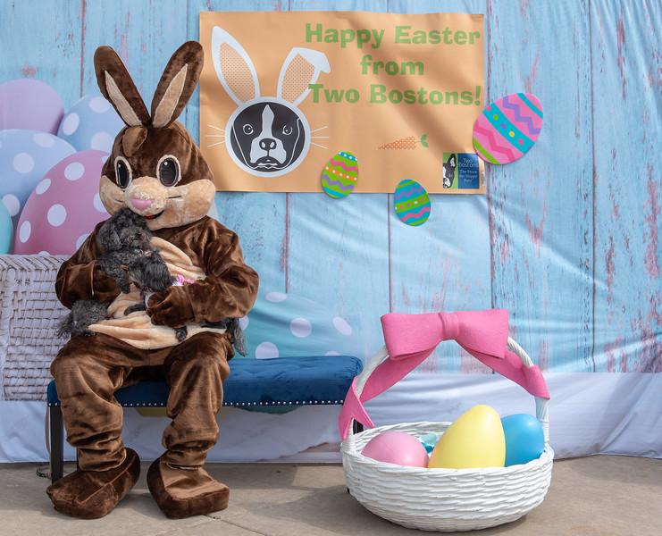 Easter2019TwoBostons-8237.jpg