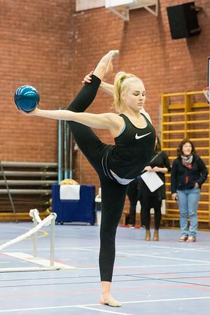 Örnsköldsviks Gymnastikklubb (ÖGK)