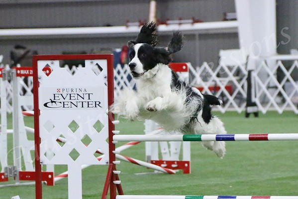 2014 ESSFTA NATIONAL SPECIALTY @ PURINA FARMS