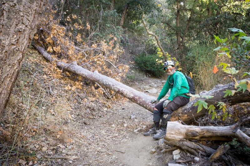 20181118017-MWBA Gabrielino Trailwork.jpg