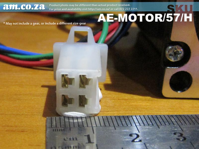 Plug-Size.jpg
