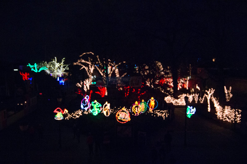 Toledo Zoo Light Show - 2014 - _CAI4504.jpg