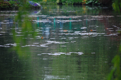 France 2011:Giverny/Monet