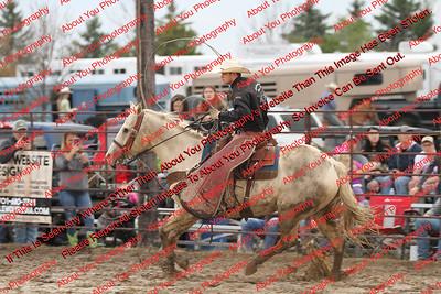 Bucking Ponies