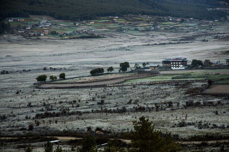 Bhutan111.jpg