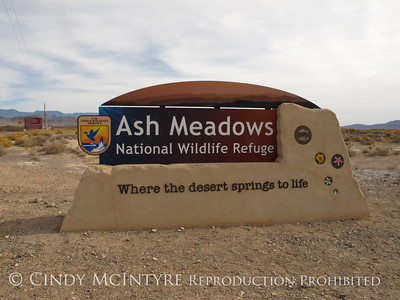 Ash Meadows National Wildlife Refuge, Nevada