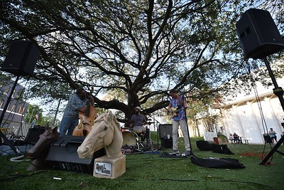 Royal Horses at Wine Down Town 7.17.20 Laurel, MS