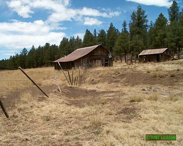 Hannigan Meadow, Arizona - June 2002