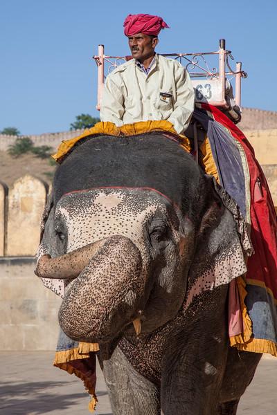 India 1005.jpg