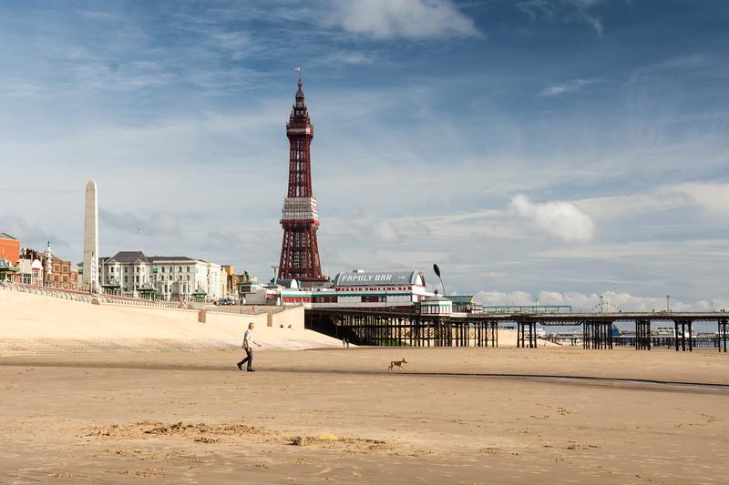 Dog walking on Blackpool Beach