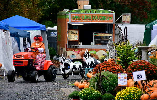 10/13/2018 Mike Orazzi | Staff Joan Vallee gives tractor rides during the Halloween Harvest Festival held at the Wojtusik Nursery on Terryville Avenue in Bristol Saturday. The festival continues weekends through October 28th.