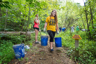 32346 WVU Freshmen Students Honors Service Day August 2016
