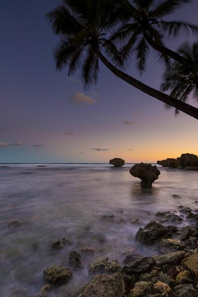 Barbados_5DMkII_20121120_0155-Edit.jpg