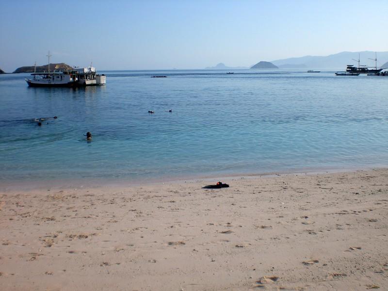 komodo island tours boats.JPG