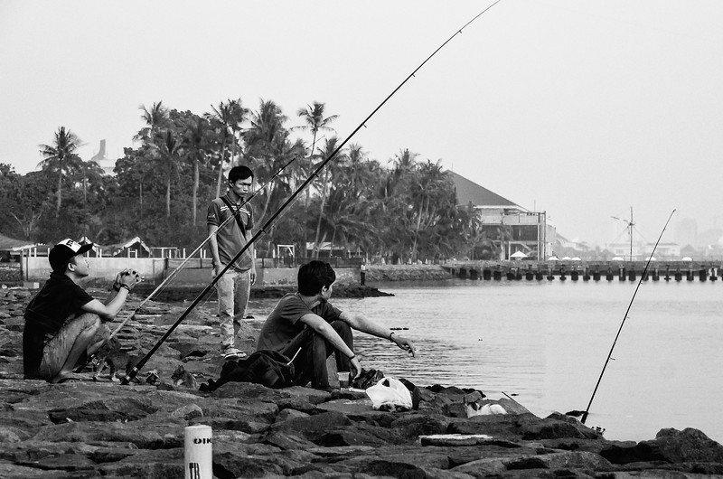 Shoreline Fishing in the Morning