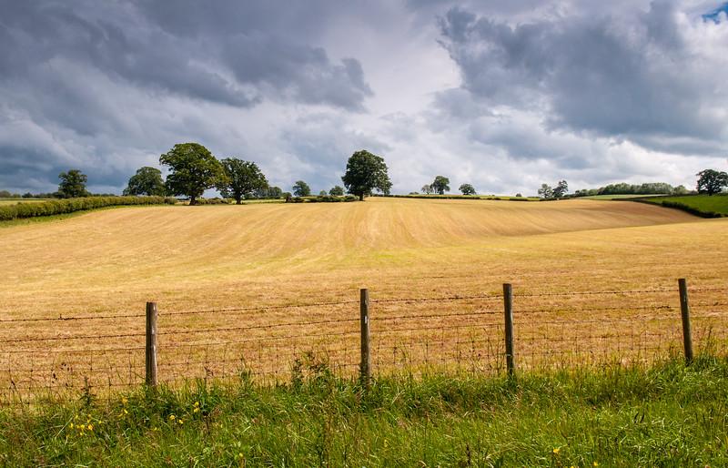 Rolling fields in Cumbria