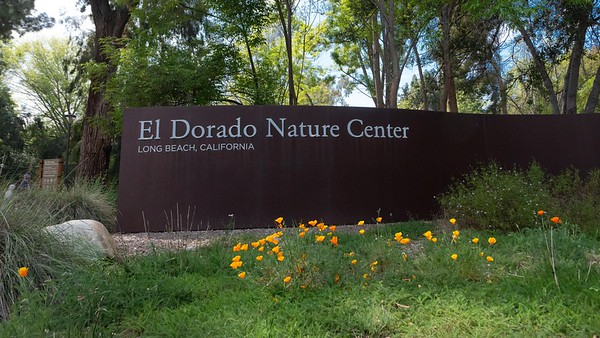 A day at the nature center