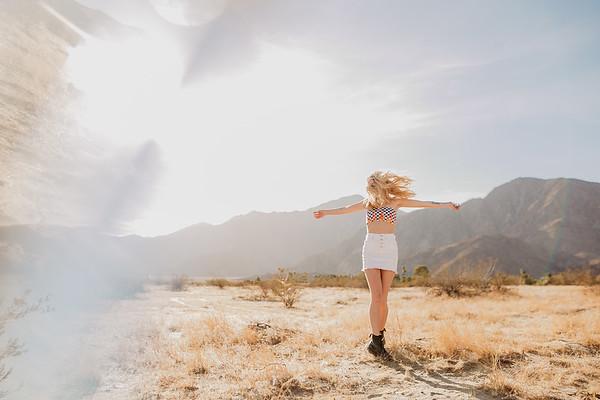 Desert Trip - Anza Borrego