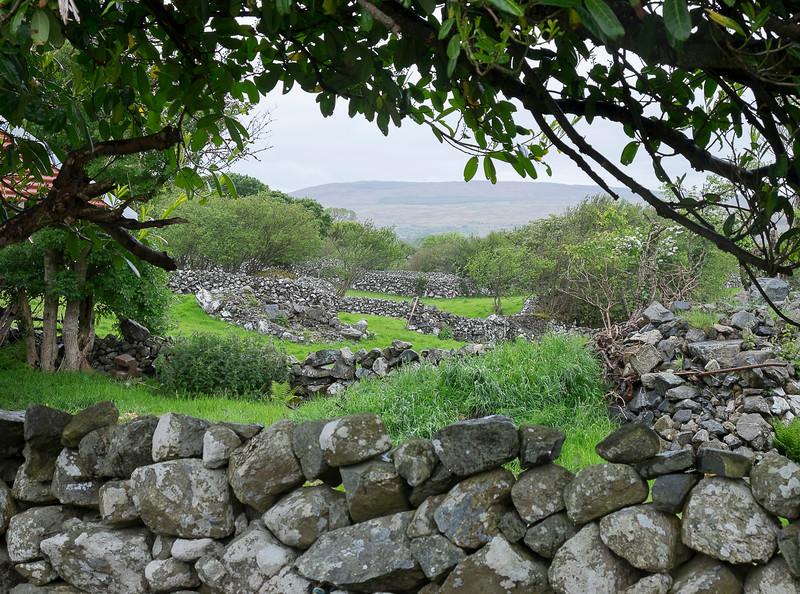 Sorry. More stone fences.