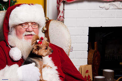 Santa Christmas 2012