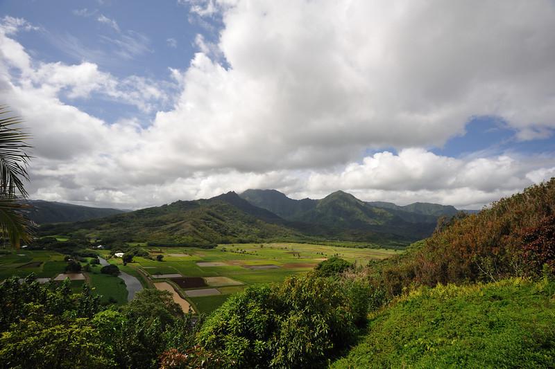 Kauai_466_67.jpg